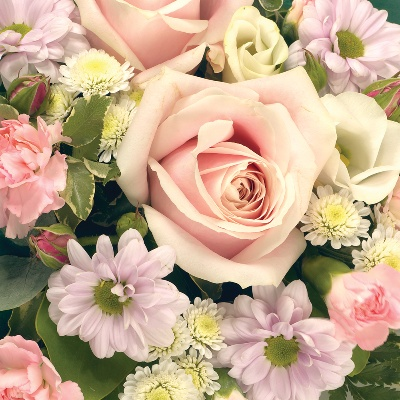 Posy Pink and White
