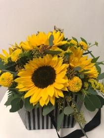 Autumn sunflower box